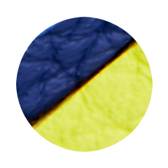 Blue and Yellow