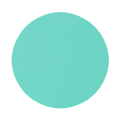 Robin's Egg Blue
