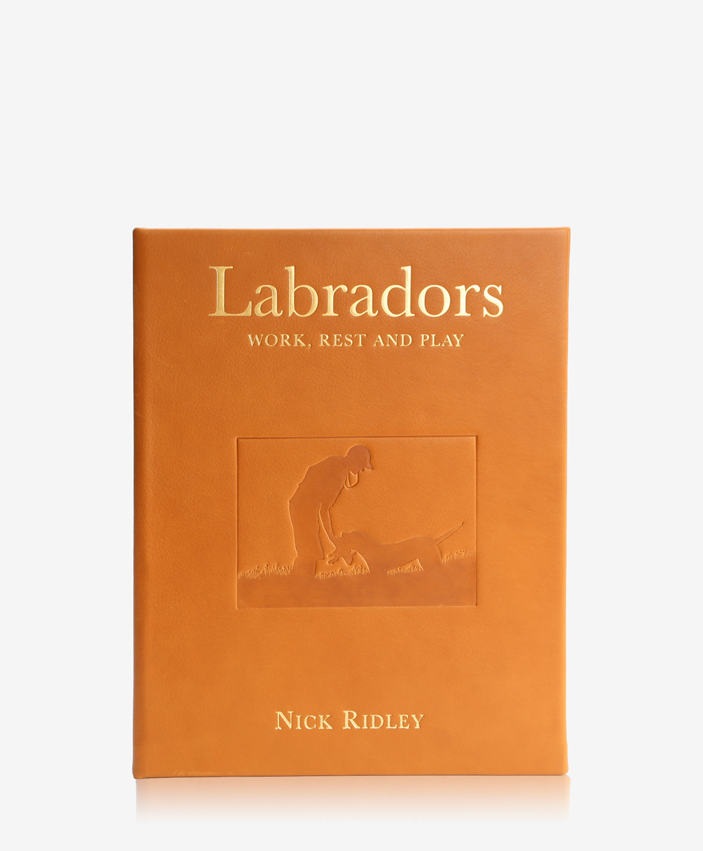"""""""""""Labradors Work, Rest and Play Traditional Leather"""""""""""" BSL-TR1-BRT"""